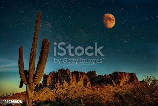 Night in the Desert with moon and saguaro cactus.