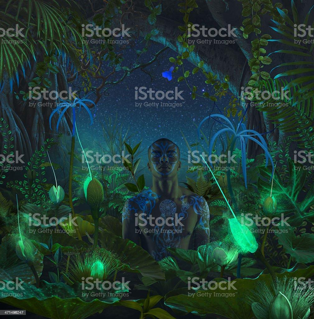 Night Jungle stock photo