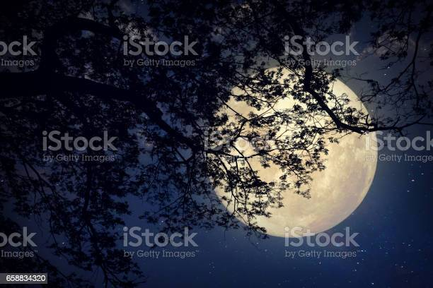 Photo of night landscape