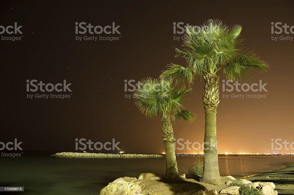 Night on the beach royalty-free stock photo