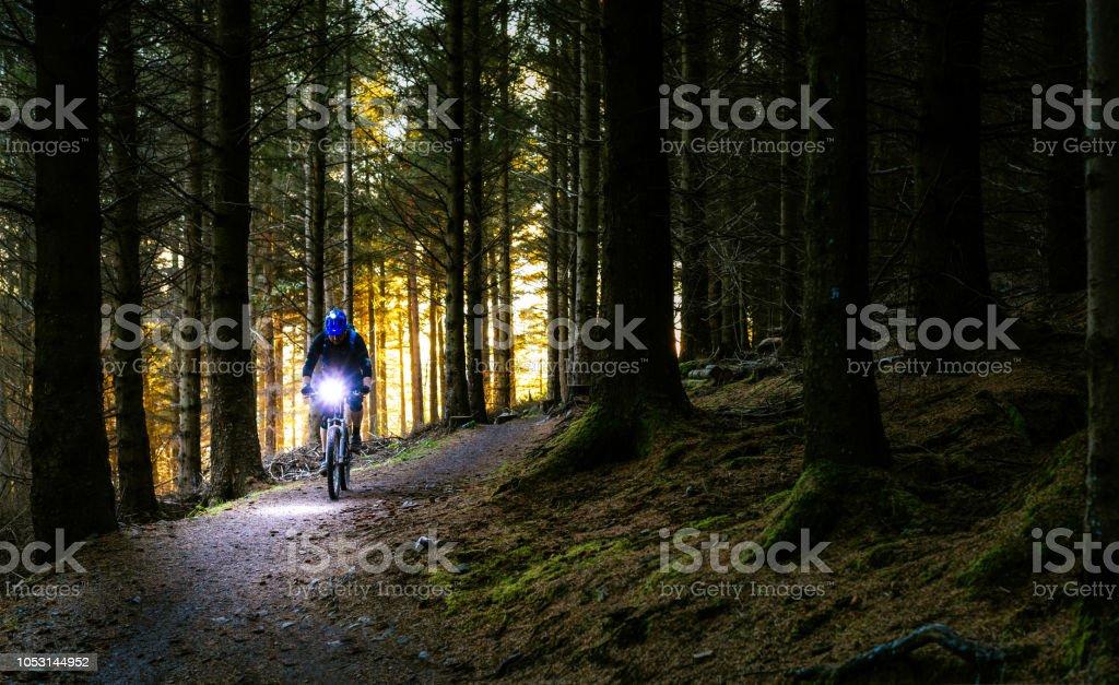 Nacht Reiten auf einem Mountainbike-Strecken durch Wald - Lizenzfrei Abenddämmerung Stock-Foto