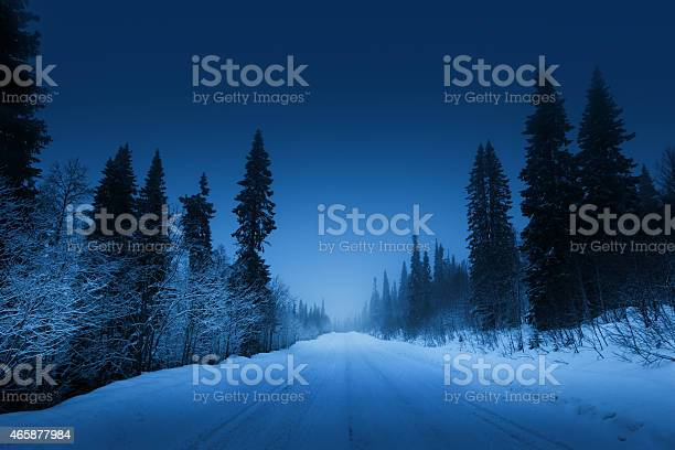 Photo of night road in winter forest