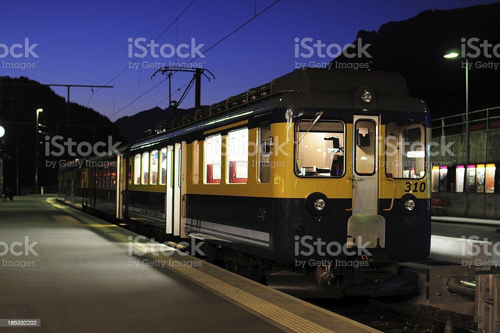 Night Scene of Trian Station - XLarge royalty-free stock photo