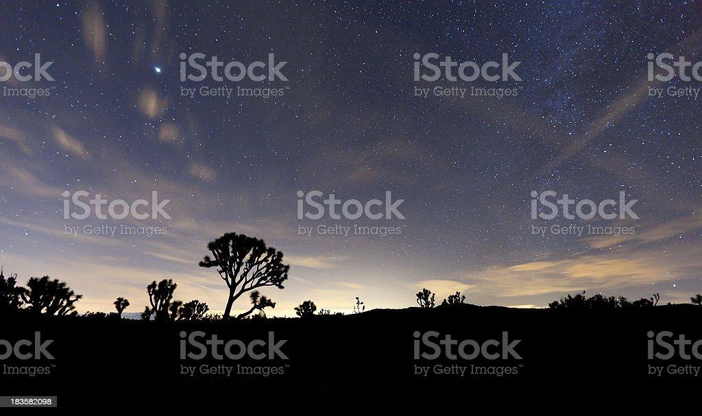 Night Sky at Joshua Tree National Park royalty-free stock photo