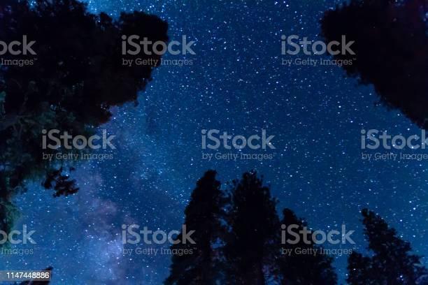 Photo of Night Sky in Yosemite Valley