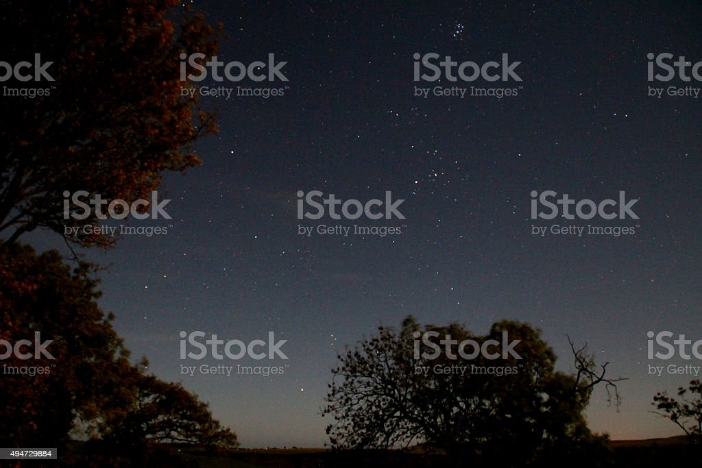 Night sky, North Yorkshire Moors, stars and trees stock photo