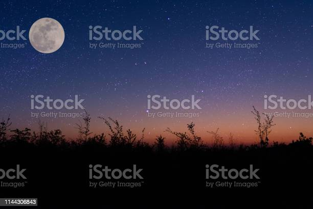 Photo of night sky over a field with moon