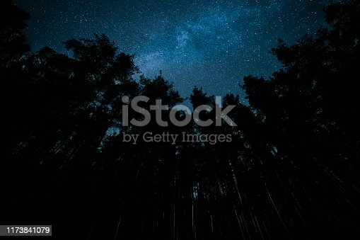 Night scene in the mountain forest with The Milky way bright and beautiful. Stargazing.
