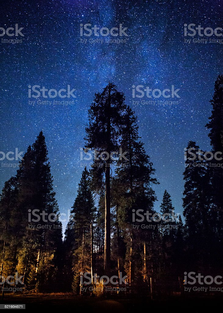 Night Sky Over Sequoia National Forest stock photo