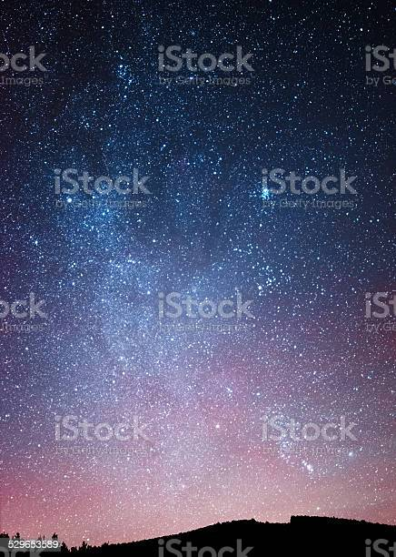 Photo of Night sky over the forest