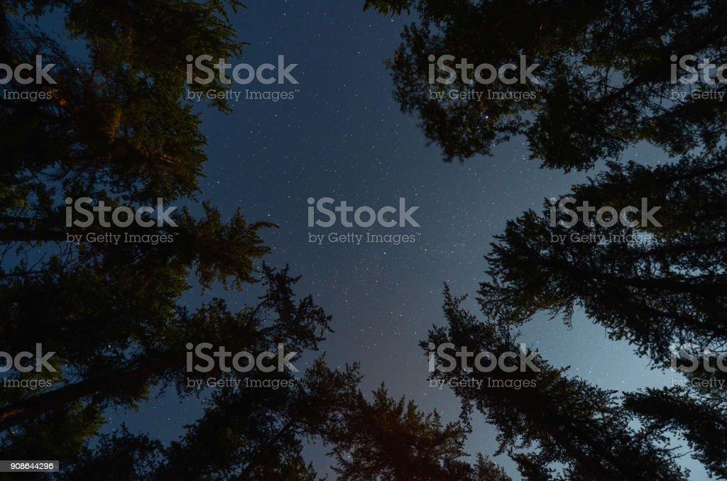 night sky  - Lizenzfrei Abenddämmerung Stock-Foto
