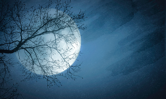 Night Sky with Full Moon and Tree Silhouette - Watercolor Background