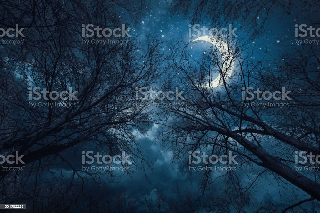 Night sky with stars and moon royalty-free stock photo