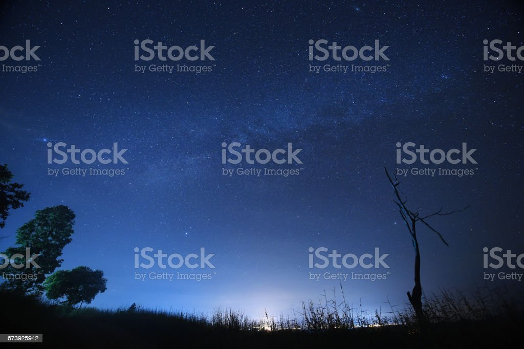 Night sky with the Milky Way over the forest and trees photo libre de droits