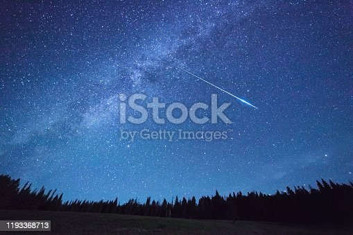 Milky Way Above Trees in Yellowstone park.. Night Sky,meteor shower.