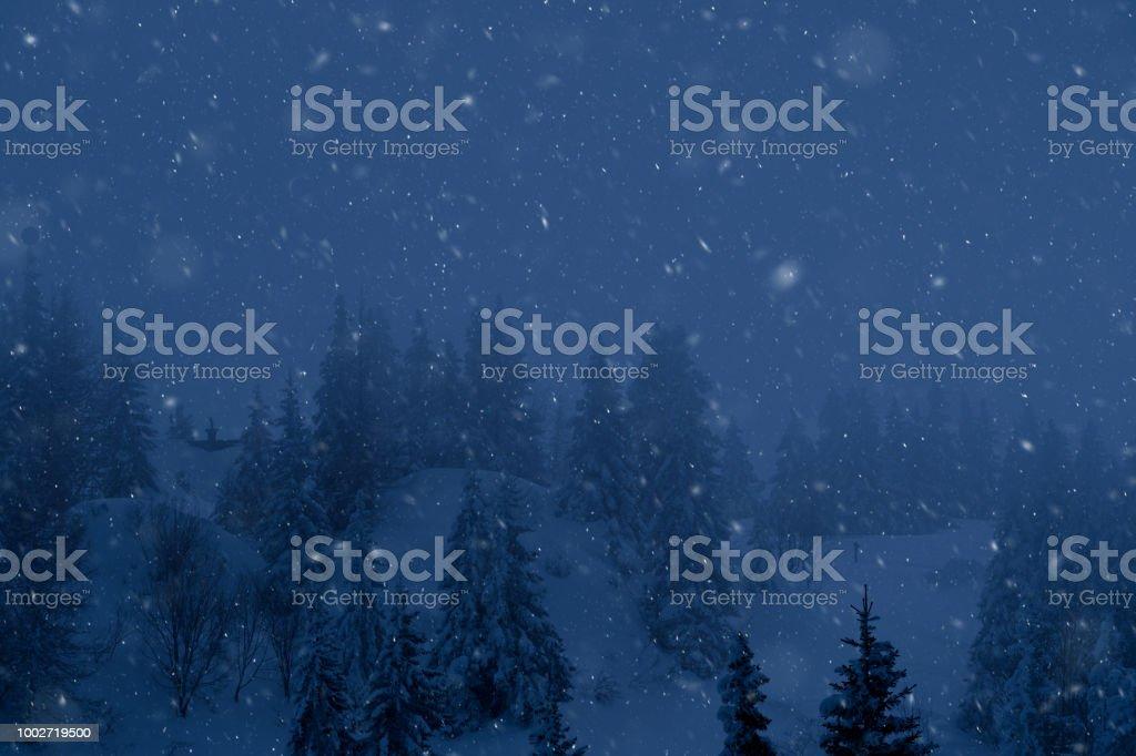 Schneefall bei Nacht – Foto