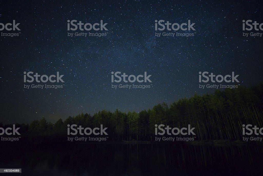 Ночь starry sky на лес и Озеро стоковое фото