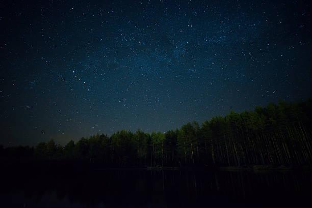 Cтоковое фото Ночь starry sky на лес и Озеро
