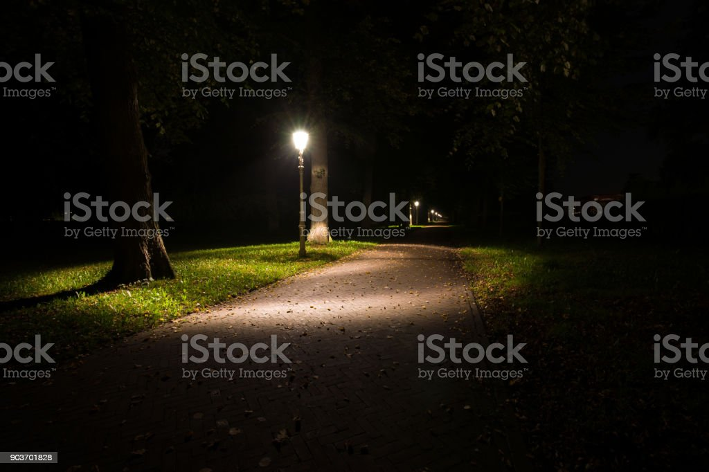 Night View Of A Dutch Park And Lightning Lamp Posts Stock Photo U0026 More  Pictures Of Alley | IStock