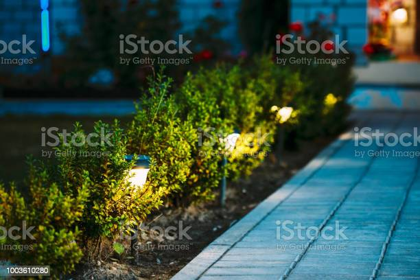 Photo of Night View Of Flowerbed With Flowers Illuminated By Energy-Saving Solar Powered Lanterns Along Path Causeway On Courtyard Going To The House