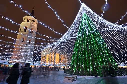 Night view of the christmas tree in Vilnius