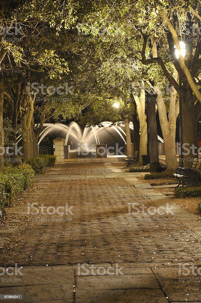 Night Walk to Fountain royalty free stockfoto
