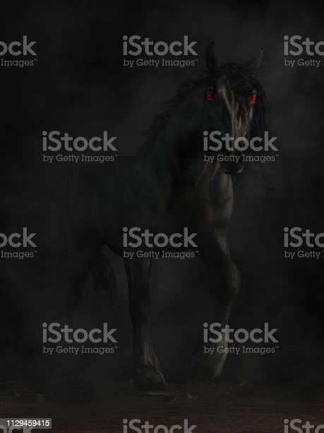 Photo of Nightmare Horse
