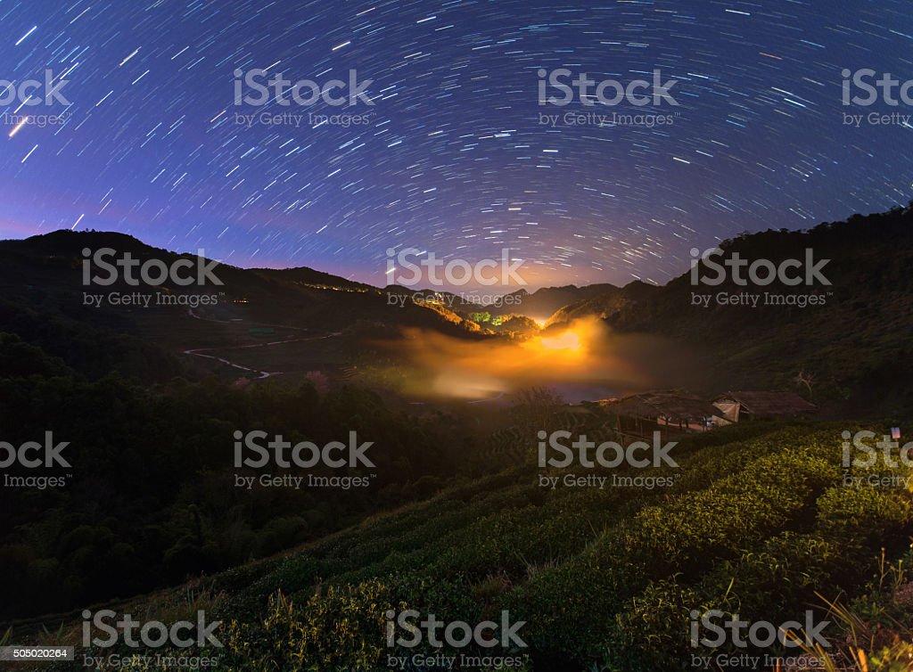 Nightscape at Tea plantation in Doi Ang Khang stock photo