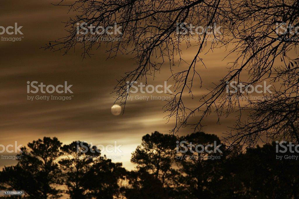 Nightscape stock photo