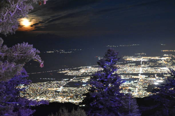 nighttime city scape from a mountain view with trees and the moon - steven harrie stock pictures, royalty-free photos & images