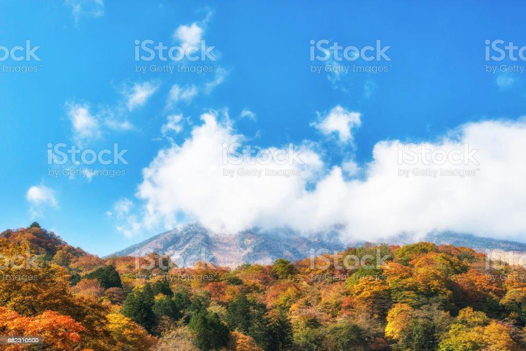 Nikko National park. Autumn foliage in the mountains, Tochigi, Japan. stock photo