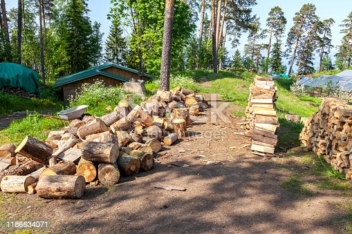 Archipelago of Valaam. Nikolsky Island. Monastic economy. Harvesting firewood for the winter