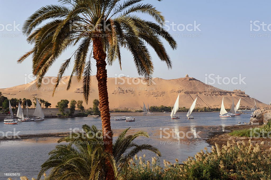 Nile at Aswan stock photo