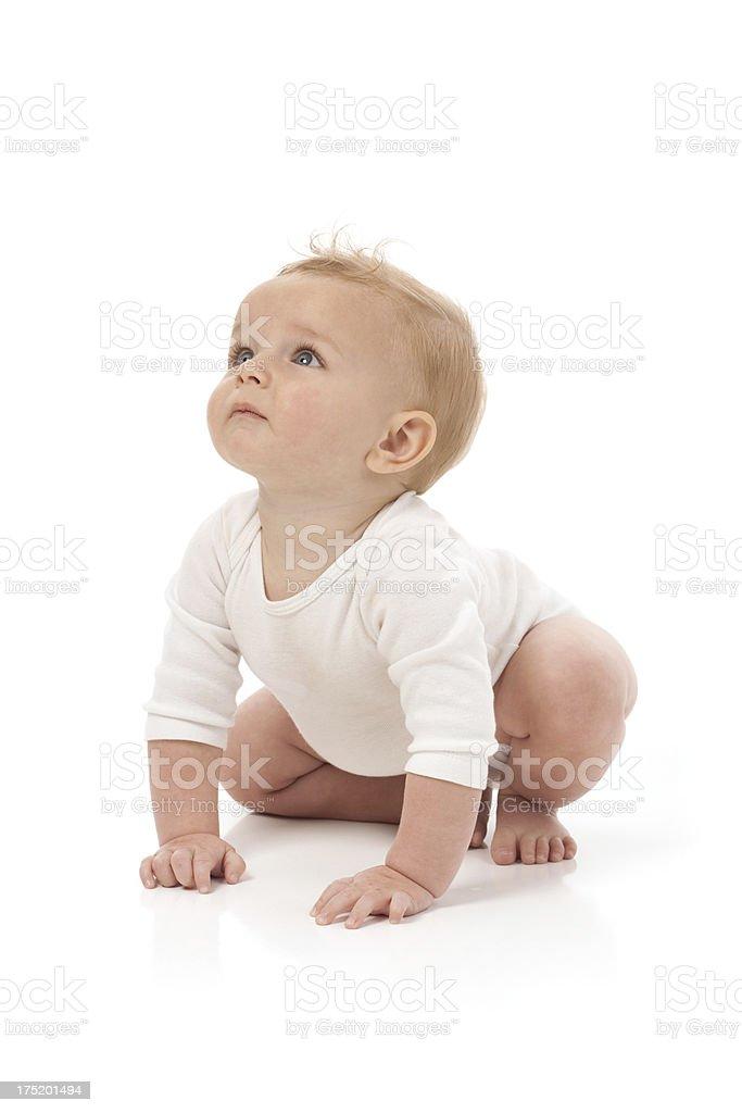 Neun Monate altes Baby auf einem weißen Hintergrund nachschlagen – Foto