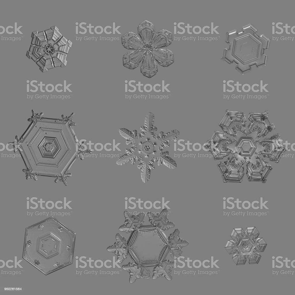 Nine snowflakes isolated on uniform gray background stock photo