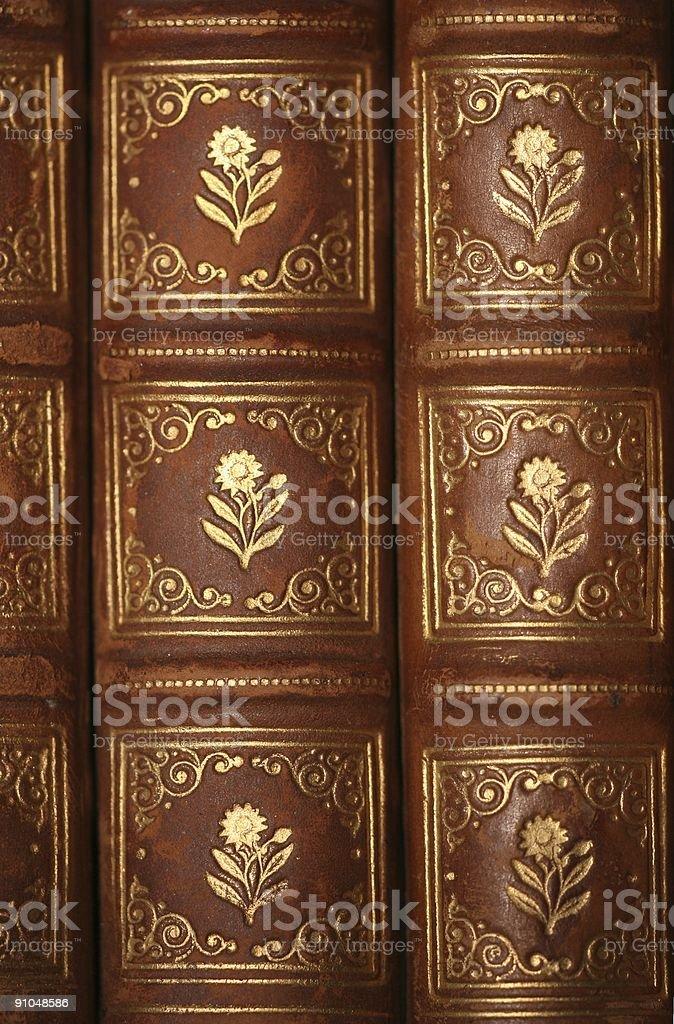 Nineteenth century books royalty-free stock photo