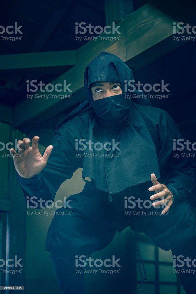 Ninja in the Shadows royalty-free stock photo