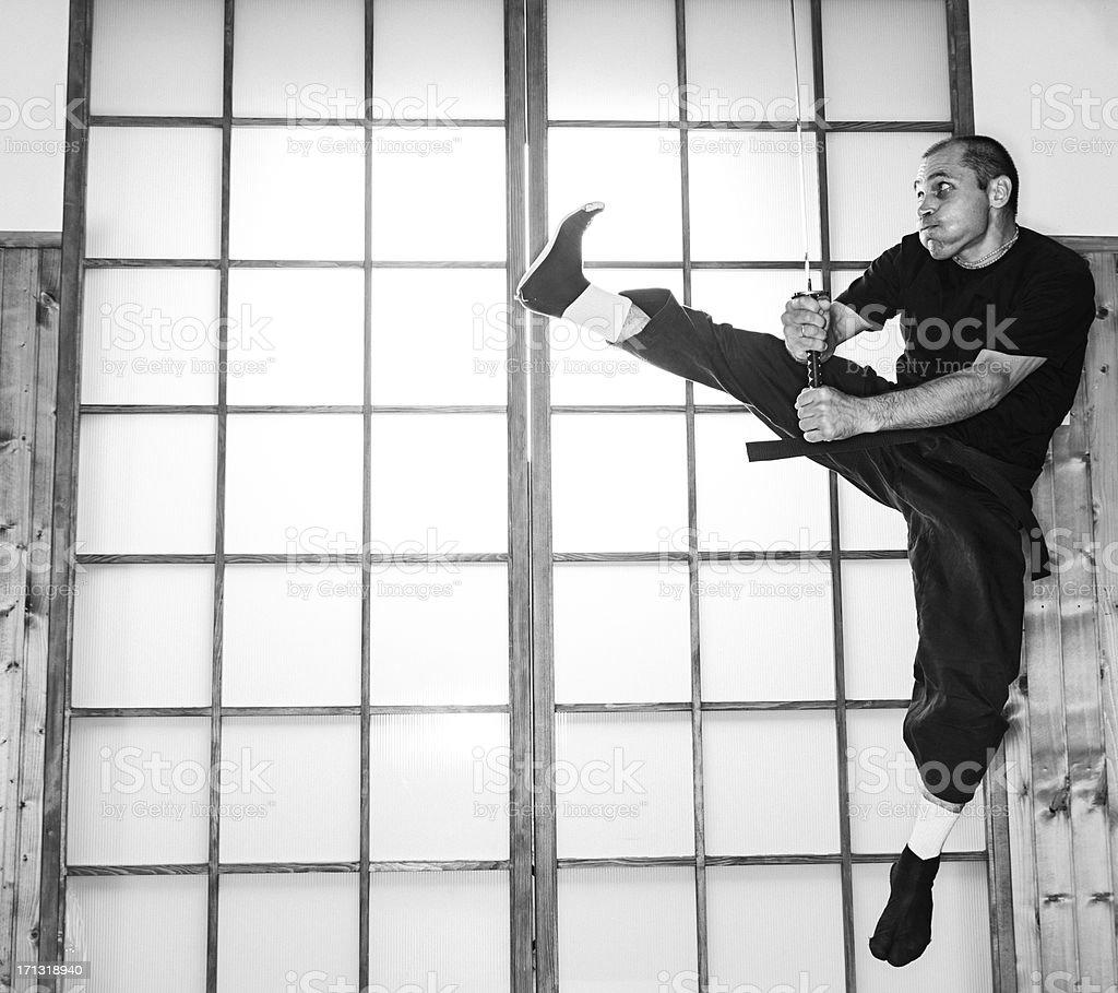 Ninja royalty-free stock photo