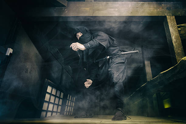ninja  - ninja fotografías e imágenes de stock