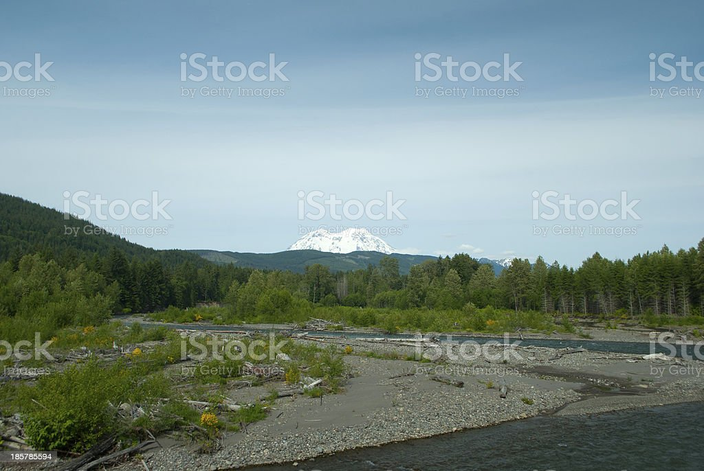 Nisqually River with Mt. Rainier in Background stock photo