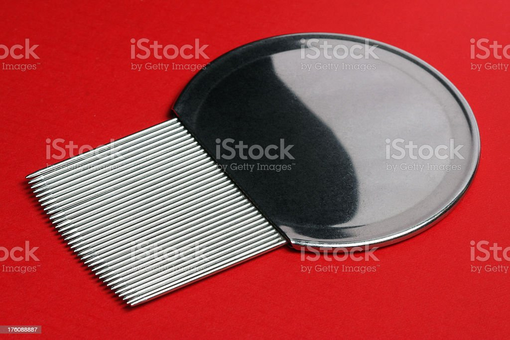 Nit Comb on Red stock photo