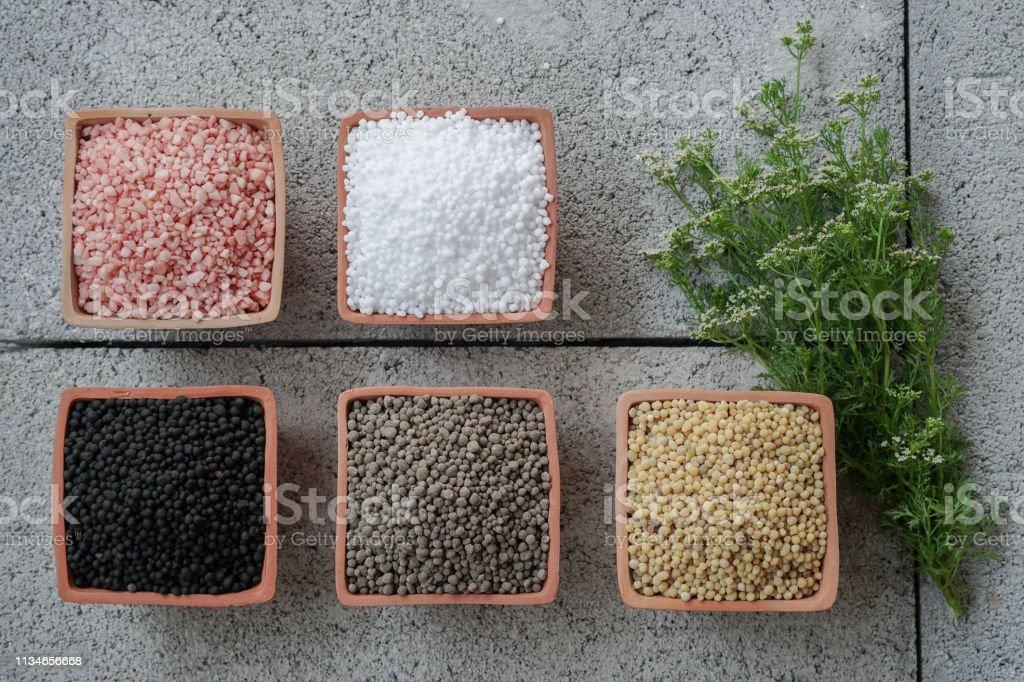Nitrogen, phosphorus, potassium, chemical fertilizer for fruits and vegetables stock photo