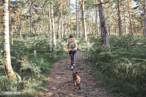 istock No better adventure buddy 1265024528