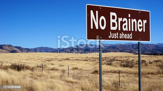 No Brainer brown road sign with blue sky and wilderness
