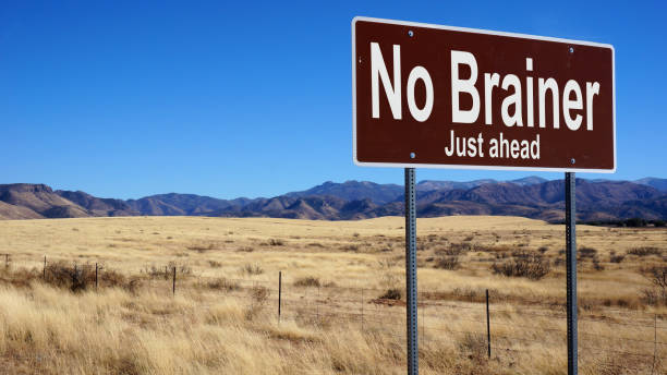 No Brainer brown road sign with blue sky stock photo