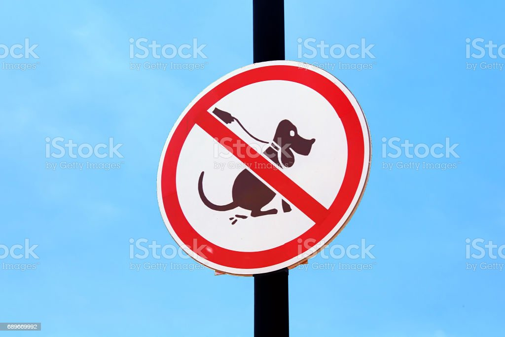 No dog poop sign over blue sky background stock photo
