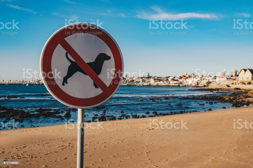 No dogs allowed on the beach street sign in Cascais, Portugal stock photo