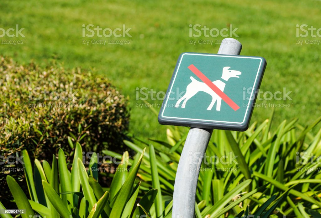 No Dogs Allowed On The Grass Area Sign - foto stock