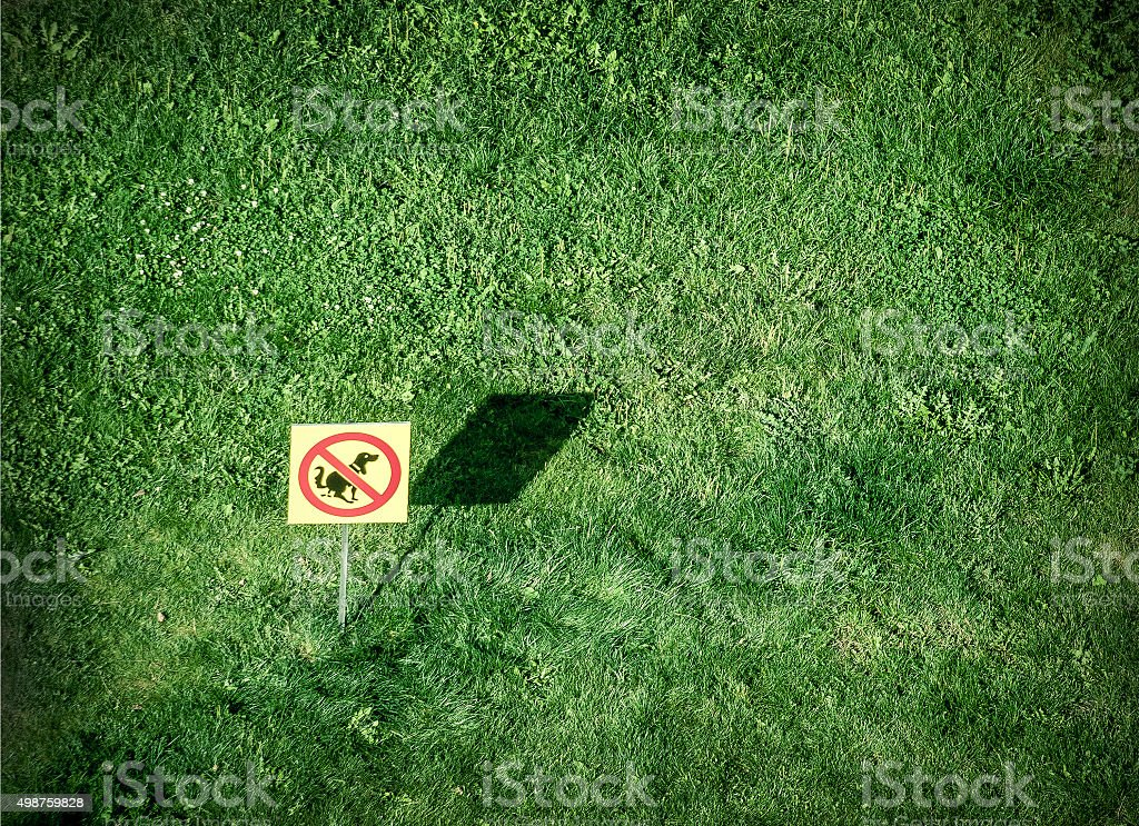 'no dogs allowed' stock photo