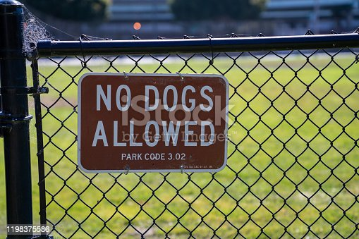 istock No dogs allowed sign on black fence on gate of grassy park 1198375586